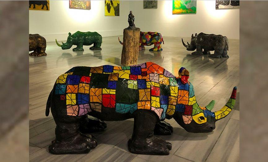 Raising Awareness for Our World Through Rhinos