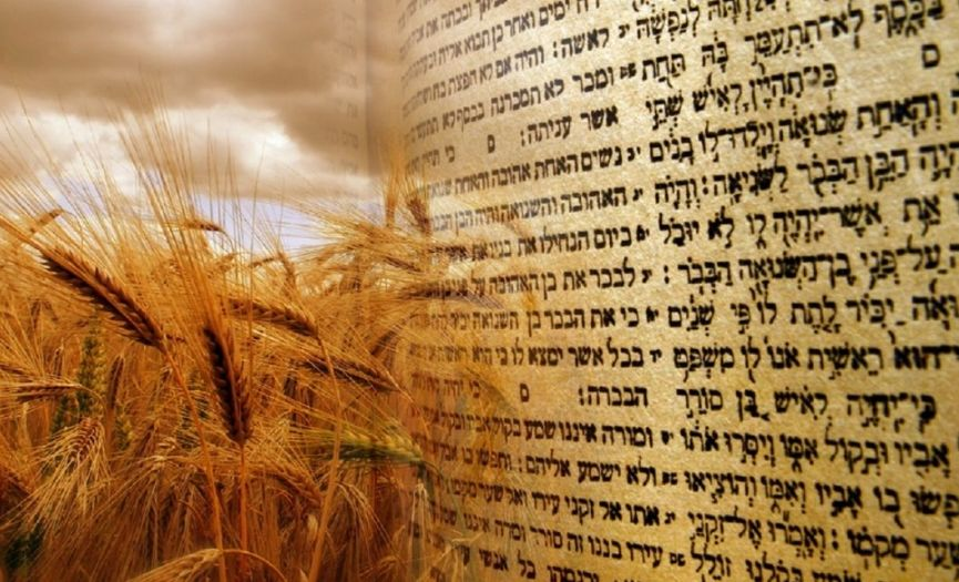 Shavuot is Coming